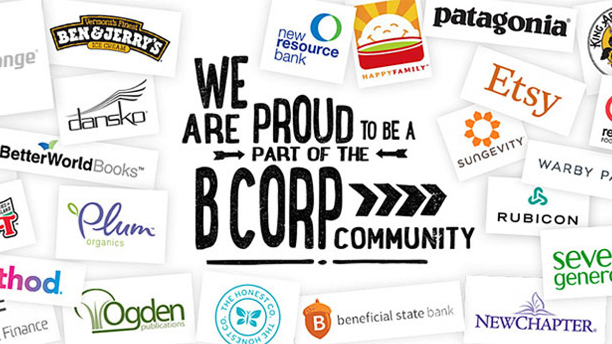 Woohoo! The Sponge is now a B Corp